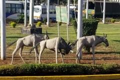 jomo kenyatta international airport sculptures